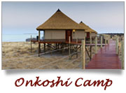 Onkoshi Camp