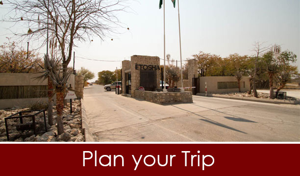 Plan-a-Trip