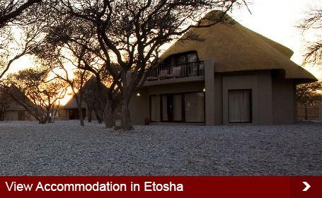 Etosha-Accommodation