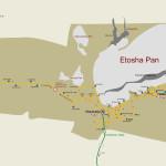 Etosha East