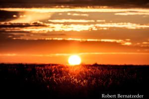 Sunset in Etosha-1