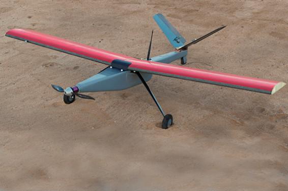 Drone in Etosha