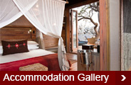 accommodation-gallery